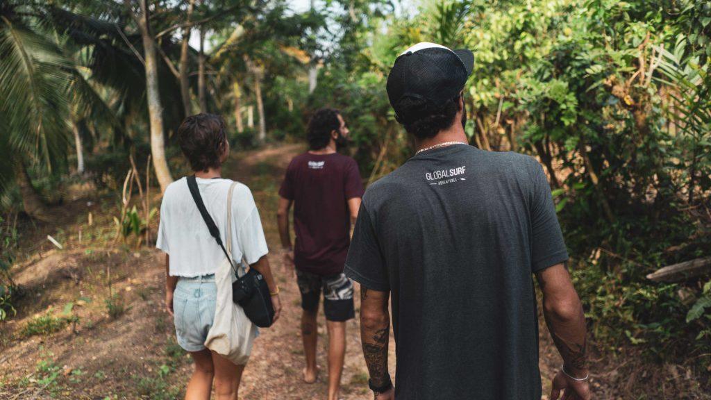 טיול בג'ונגל, בין מטעי התה, מפעל הקינמון וצמחי המרפא
